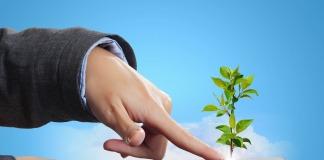 Dłoń dotykająca drzewa wyrastającego z tabletu