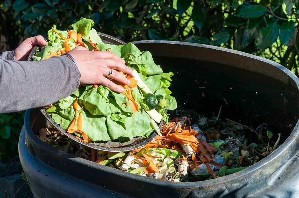 Osoba wyrzucająca odpady kuchenne do pojemnika na bioodpady