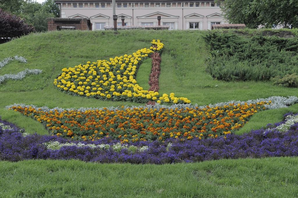 Kwiatowe Dekoracje W Polskich Miastach Gdzie Najpiękniejsze