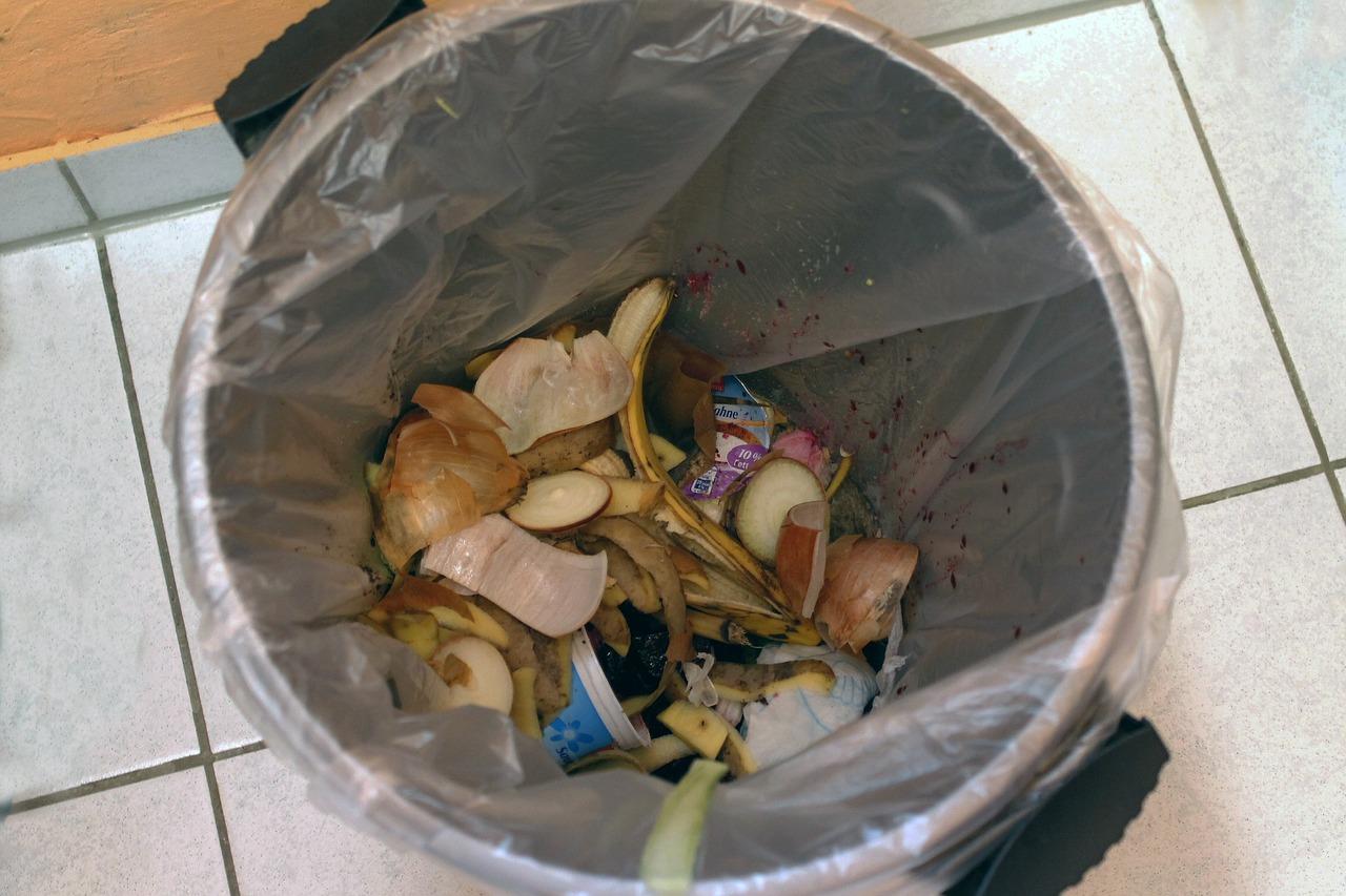 Pojemnik (śmietnik) na odpady kuchenne - żywnościowe (resztki żywności)