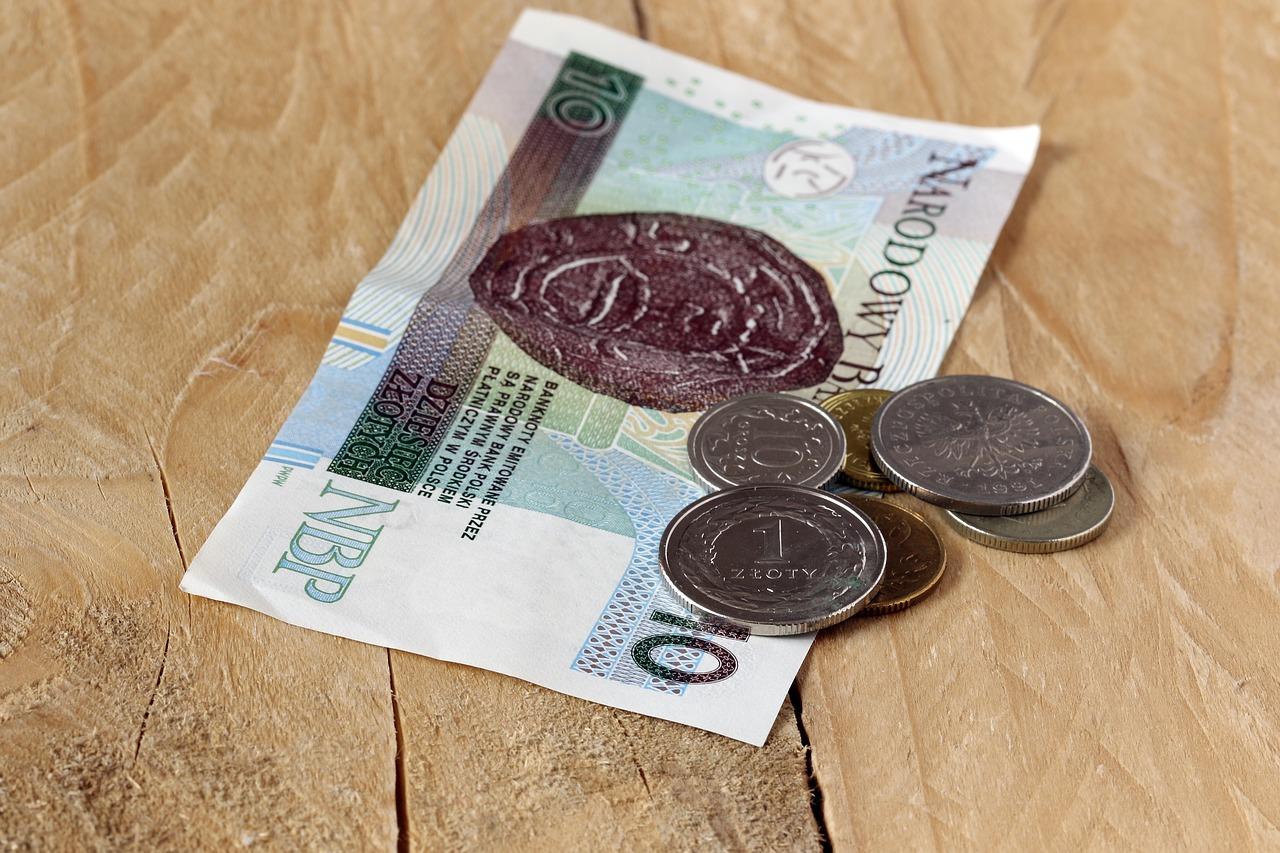 Pieniądze - papierowe 10 zł, złotówki, grosze