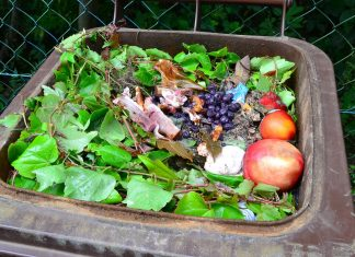 Trash container filled with food waste