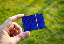 Ogniwo fotowoltaiczne na tle trawnika