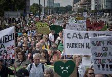 Protest ekologów przeciwko wycince Puszczy Białowieskiej