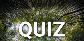 Quiz Ekologiczny Portal Komunalny