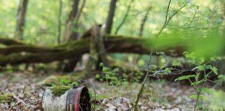 Stara puszka na ziemi w lesie