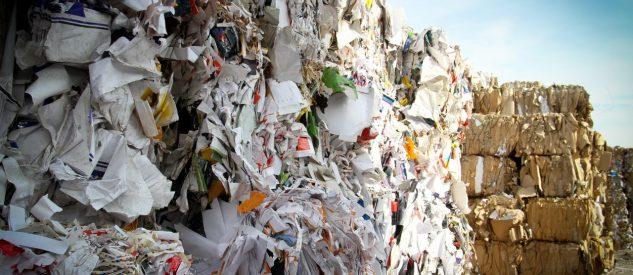Odpady tektury, papieru i kartonu. Jakie kody odpadów trzeba wpisać do BDO?