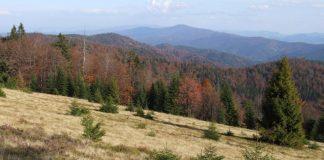Widok na Górczański Park Narodowy